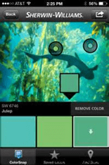 ColorSnap-App-Example-Image